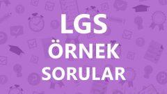 LGS Şubat Ayı Örnek Sorular 2020 MEB pdf ve çözümleri EBA