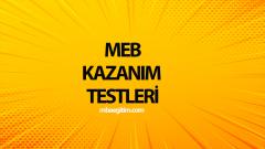 12.Sınıf MEB Kazanım Testleri ve Cevapları PDF 2019-2020
