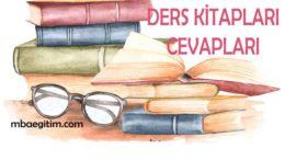 2.Sınıf Türkçe Kitabı Cevapları Koza Yayınları 2020 Tüm Temalar