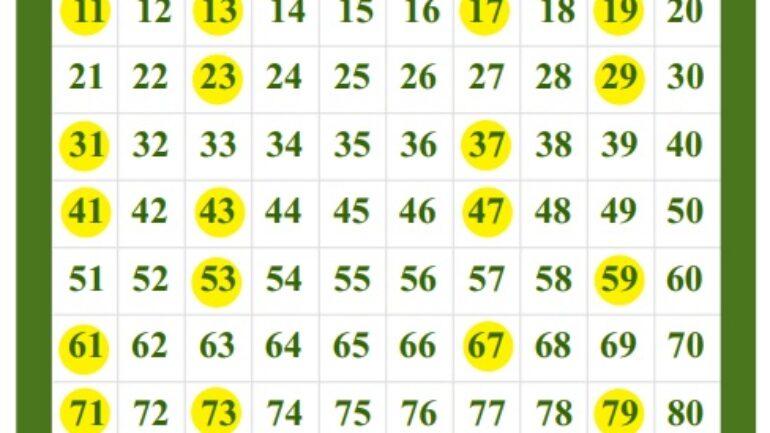 1 den 100 e kadar Asal Sayılar Tablosu