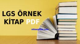 LGS Kitapları PDF 2020 LGS Kitapları indir