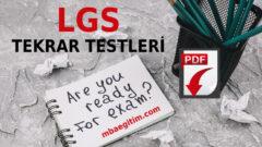 LGS Sınavından Önce Çözülmesi Gereken Sorular 2020 – Nartest